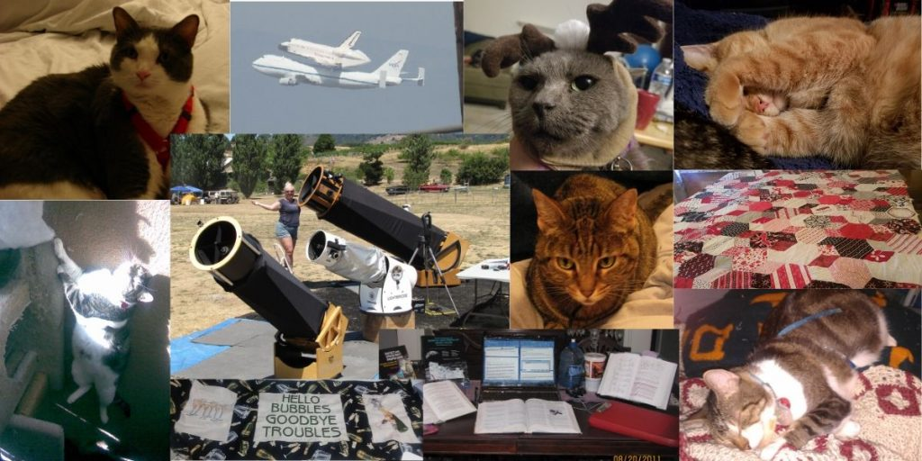 Sandy Eulitt homepage image depicting cats, astronomy, telescopes, crafts, space, events.